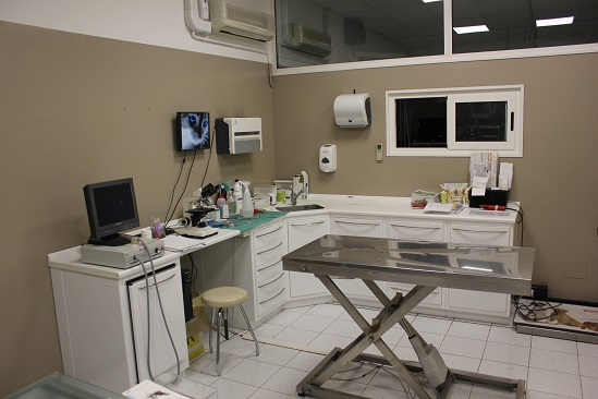 Sala visita veterinario